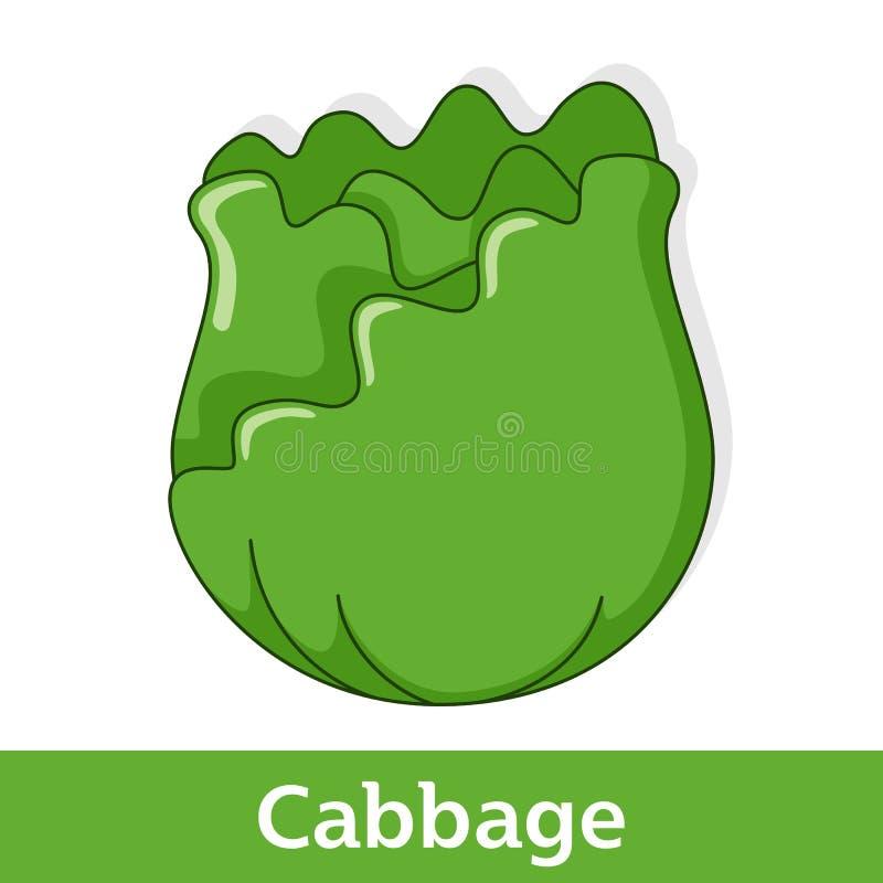 Kreskówki warzywo - Zielona kapusta ilustracja wektor
