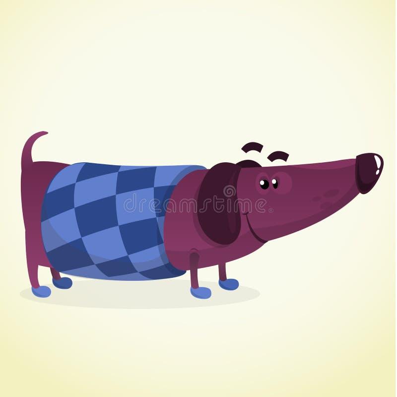 Kreskówki Wektorowa ilustracja Śliczny Purebred jamnika pies w pulowerze ilustracja wektor