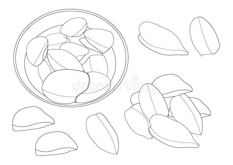 Kreskowa durian owoc w talerzu na białym tle ilustracji