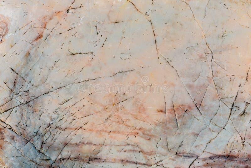 Kreskowa krzywa na marmuru kamienia tekstury tle zdjęcia royalty free