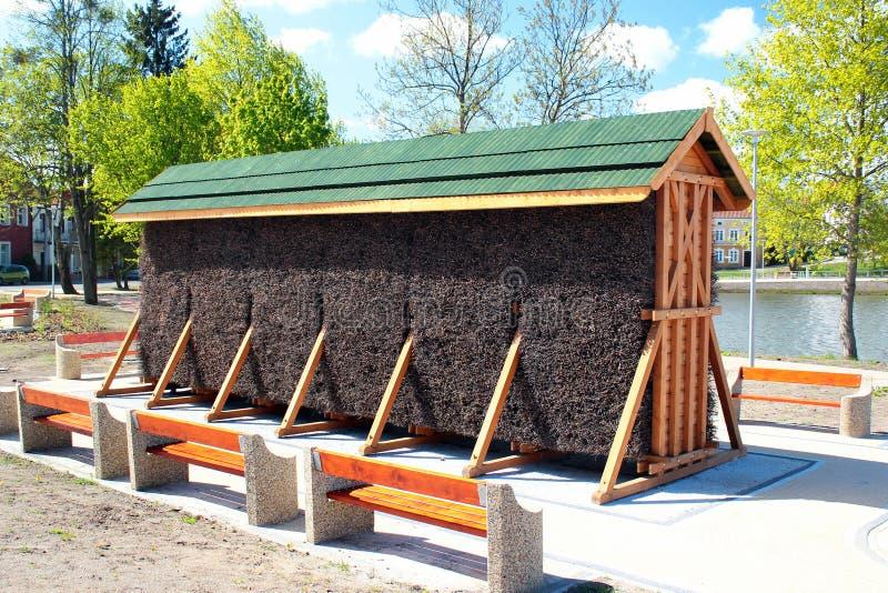 Kreupelhout in een houten rek wordt gestapeld dat royalty-vrije stock afbeeldingen