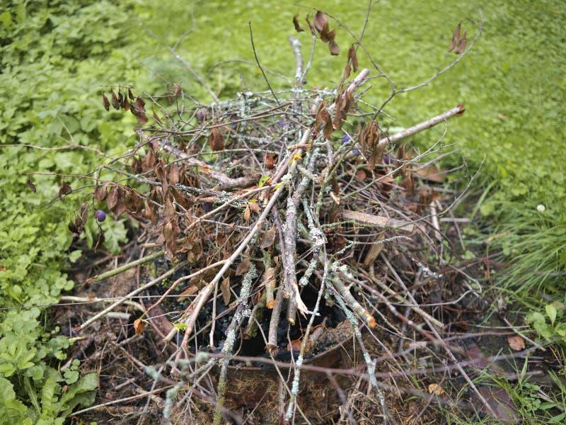 Kreupelhout voor vuur royalty-vrije stock fotografie