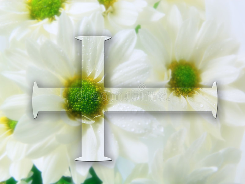 Kreuz von der Blume lizenzfreie stockfotografie