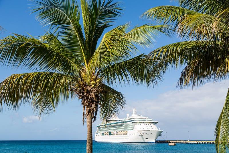Kreuzschiff auf Blau über Palmen hinaus lizenzfreie stockfotografie