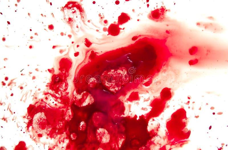 krew. fotografia stock