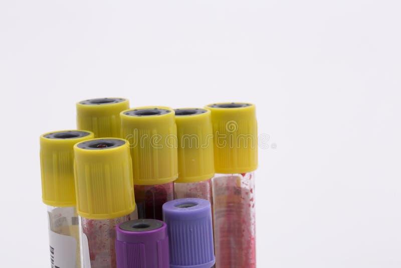 krew ruruje medycznego przemysłu, biały tło, próbne tubki zdjęcia royalty free