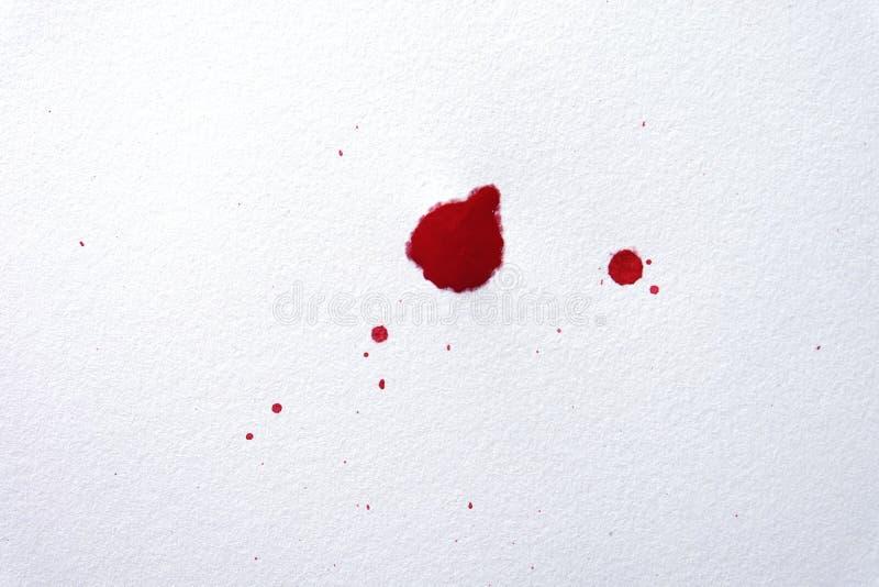 Krew splatters na białym tle obrazy royalty free