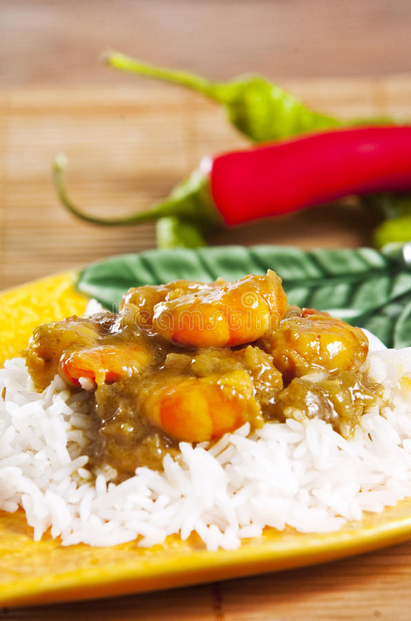 Krewetka curry obraz royalty free