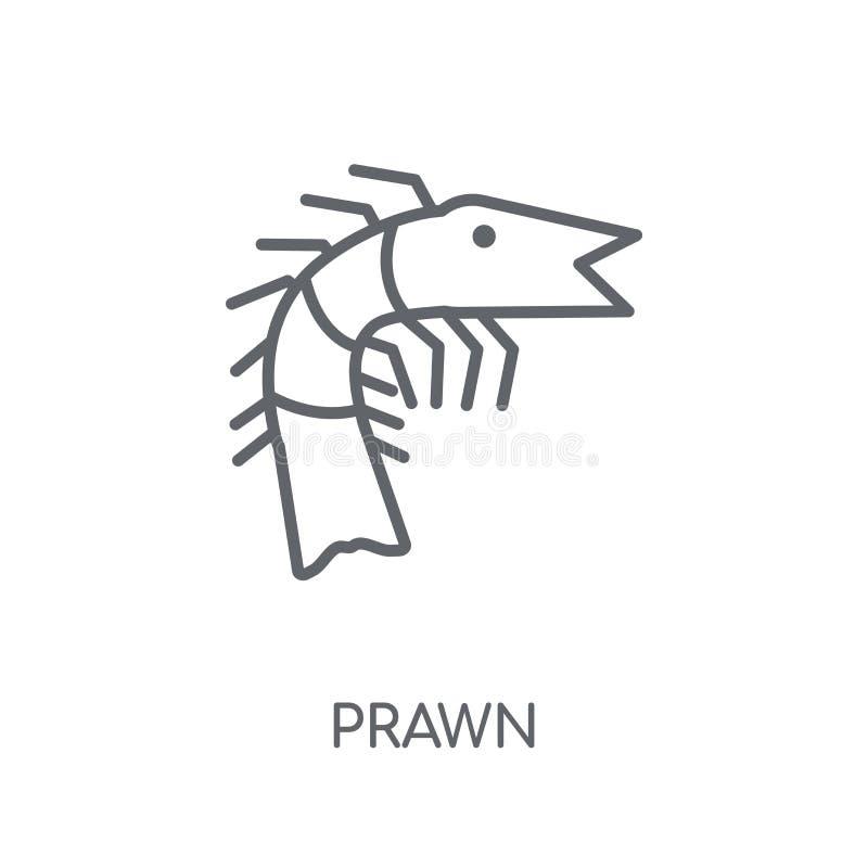 Krewetki liniowa ikona Nowożytny kontur krewetki logo pojęcie na białych półdupkach ilustracji