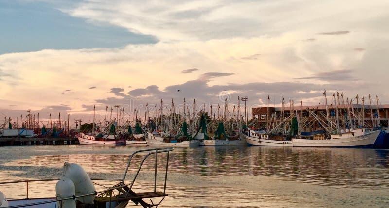 Krewetkowa Łódkowata połów flota zdjęcie stock