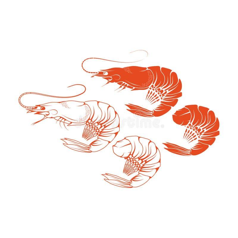 Krewetkowy logo royalty ilustracja