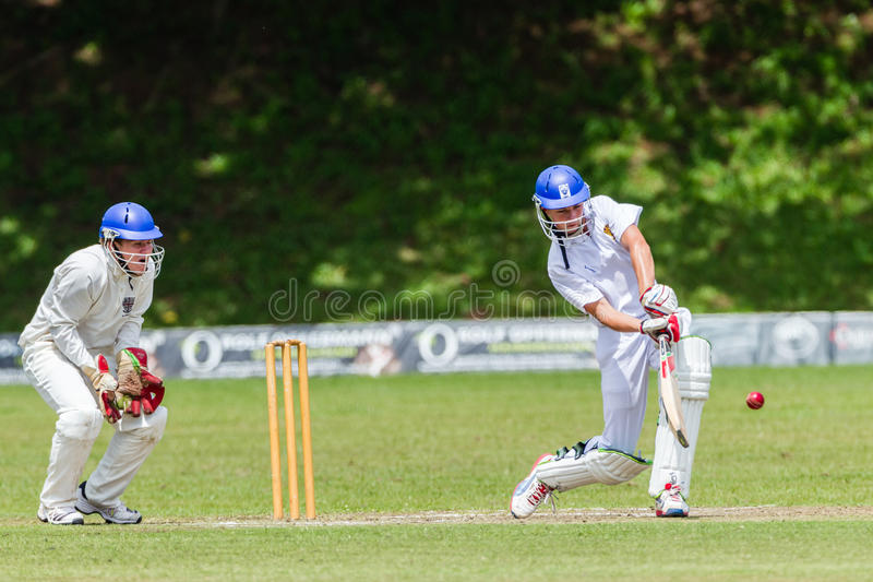 Kricket-Aktions-Sport stockfoto