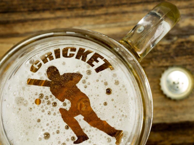 Kricketspieler im Bier lizenzfreie stockbilder