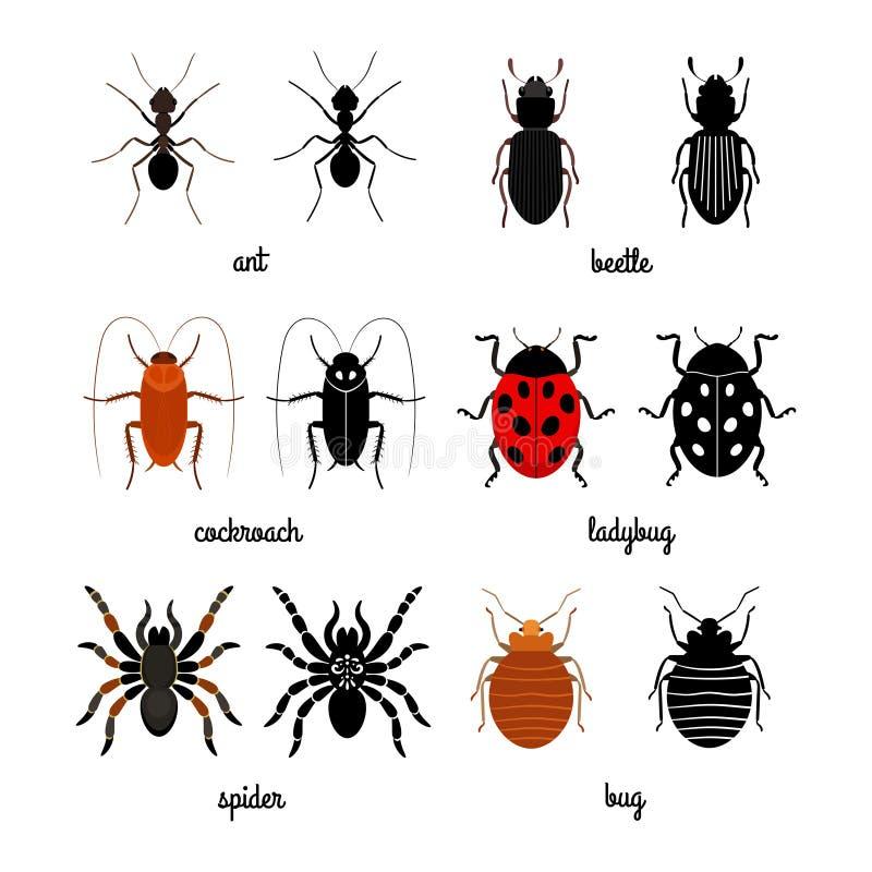 Kriechender Insektenvektorsatz - Ameise, Spinne, Käfer, Marienkäfer lizenzfreie abbildung