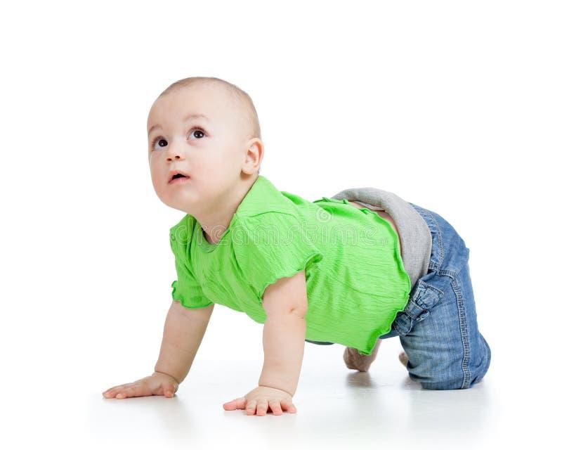 Kriechendes Baby schaut oben stockbilder