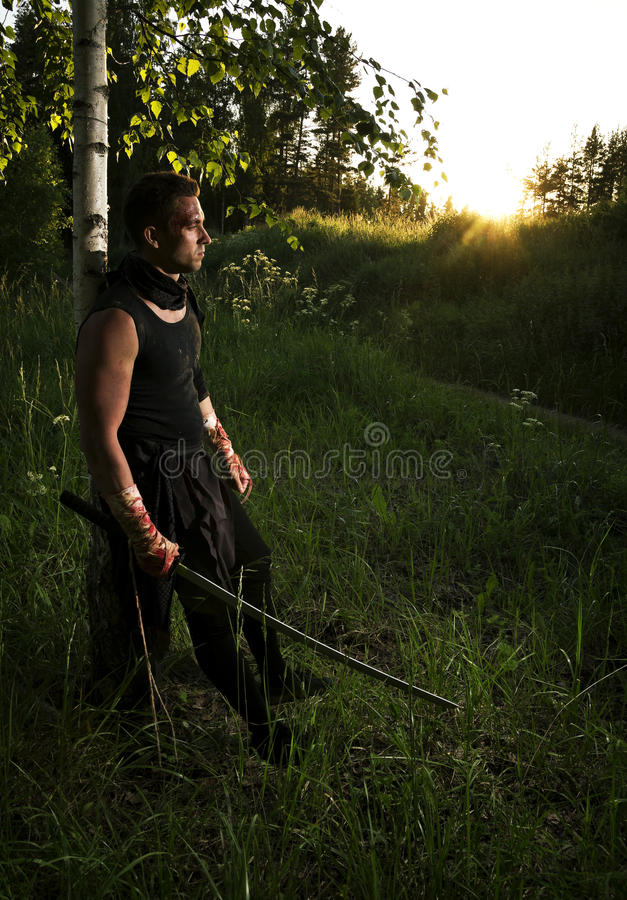 Krieger und Sonnenuntergang stockbild