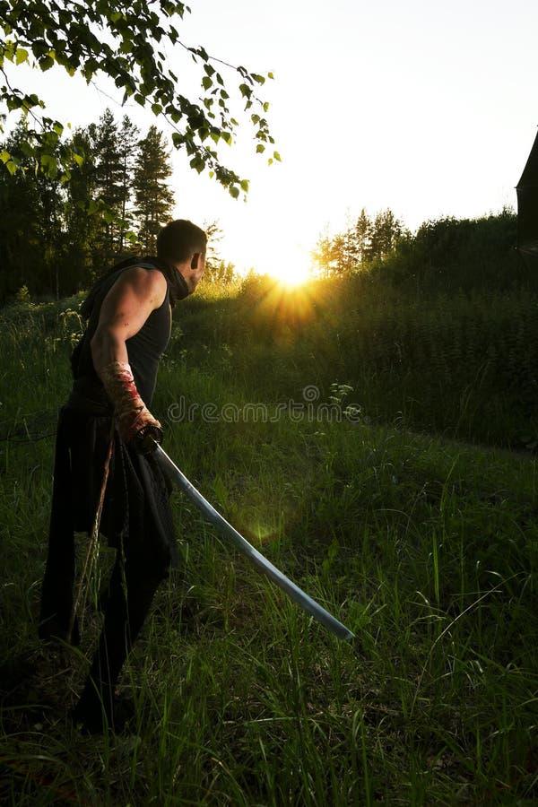 Krieger und Sonnenuntergang stockbilder