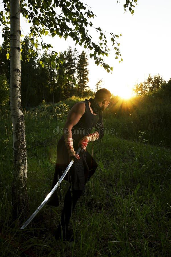 Krieger und Sonnenuntergang stockfotografie