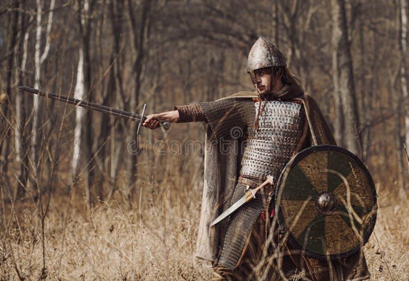krigare royaltyfri bild