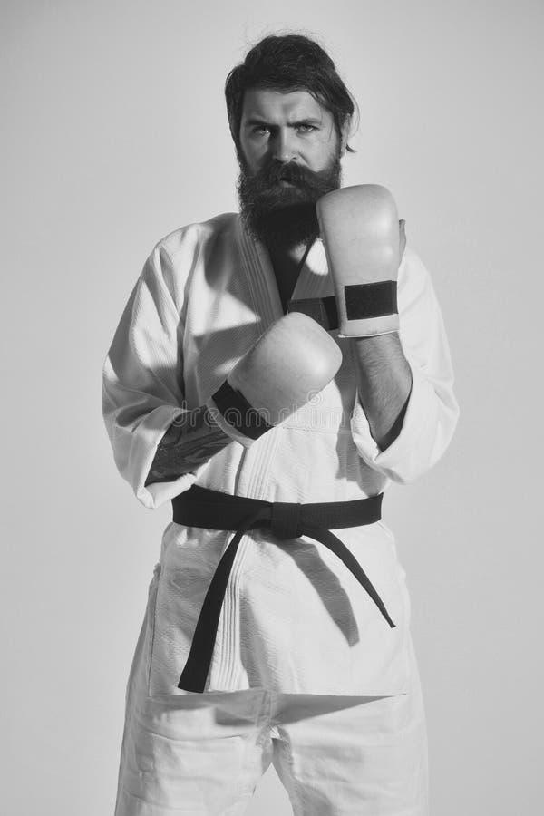 krigs- konster Skäggig allvarlig karateman i kimono- och boxninghandskar royaltyfri bild