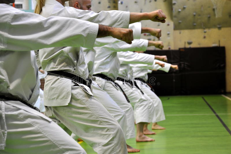 krigs- konstkarate royaltyfri foto