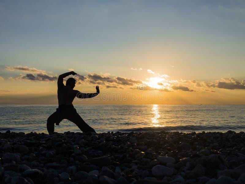 Krigs- konstnär med orange solnedgång Kontur av en manövningswhushu Sund livsstil royaltyfria bilder