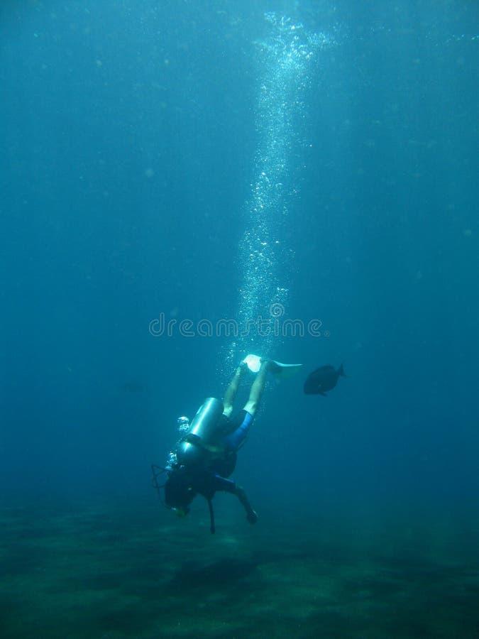Krijg duikvlucht stock foto's