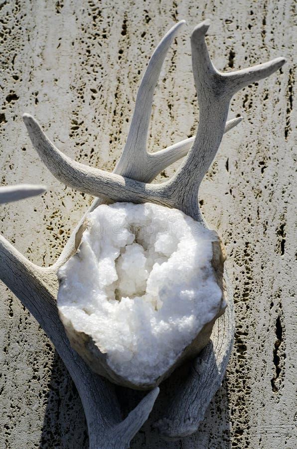 Kristal geode met Deer Antlers stock foto