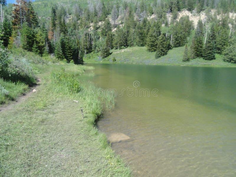 Kristall - freies Wasser lizenzfreie stockfotos