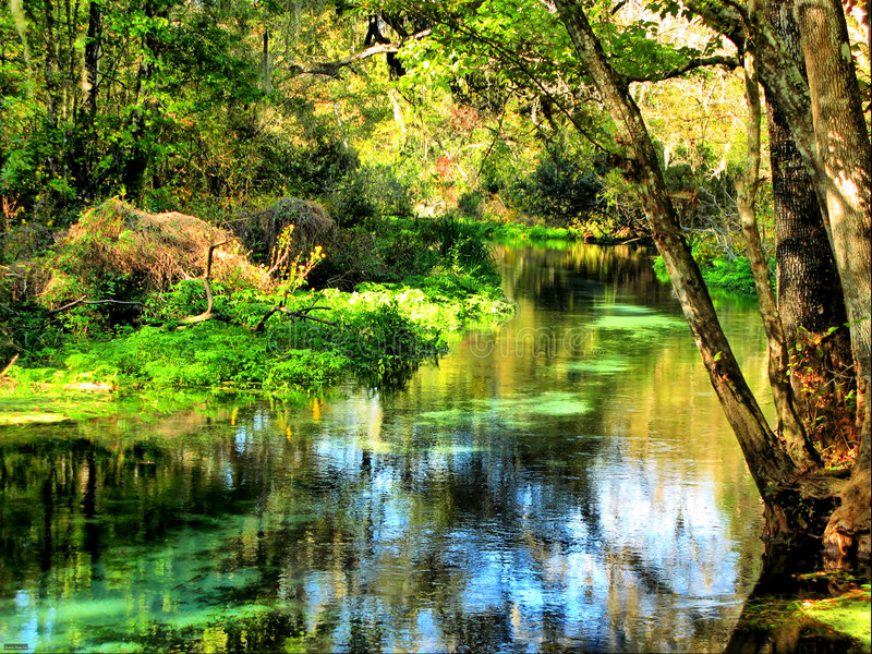 Kristallfrühlinge, Florida stockbild