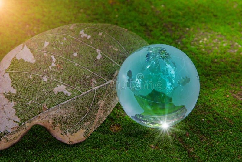 Kristallglas der Weltkugel auf trockenem Blatt auf grünem Moos und Glanzsonne reflektieren Nette Karte der Welt der Blumen und de stockfotos