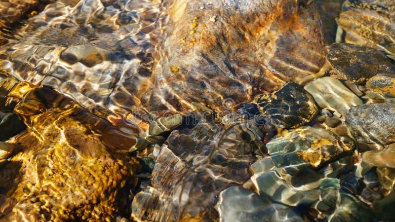 Kristallklart vatten av den lilla bäcken i den Altai stäppen royaltyfria bilder