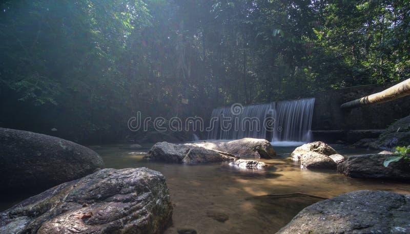 Kristallklart vatten med vattenfallet i skogen royaltyfria foton