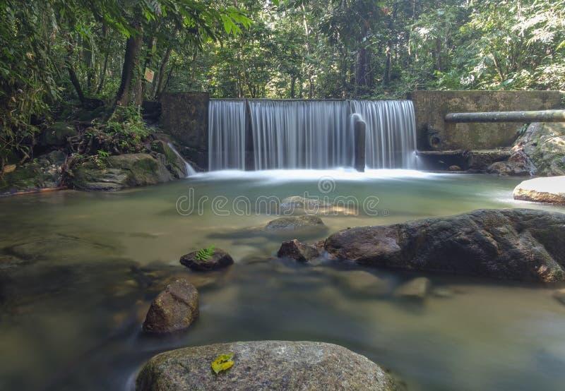Kristallklart vatten med vattenfallet i skogen arkivbild