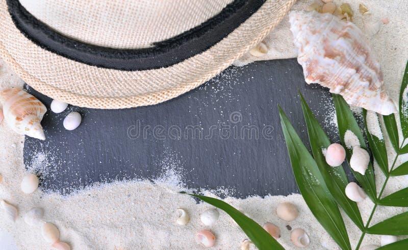 kritisera på sanden med hatten och skal royaltyfri foto