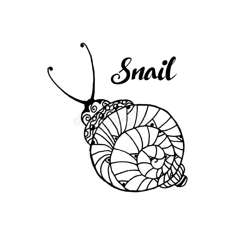 Kritzeln Sie Spitzen- Schnecke des Artspaßes, einfarbiges Tier auf Weiß Element für Malbuchseitendesign lizenzfreie abbildung