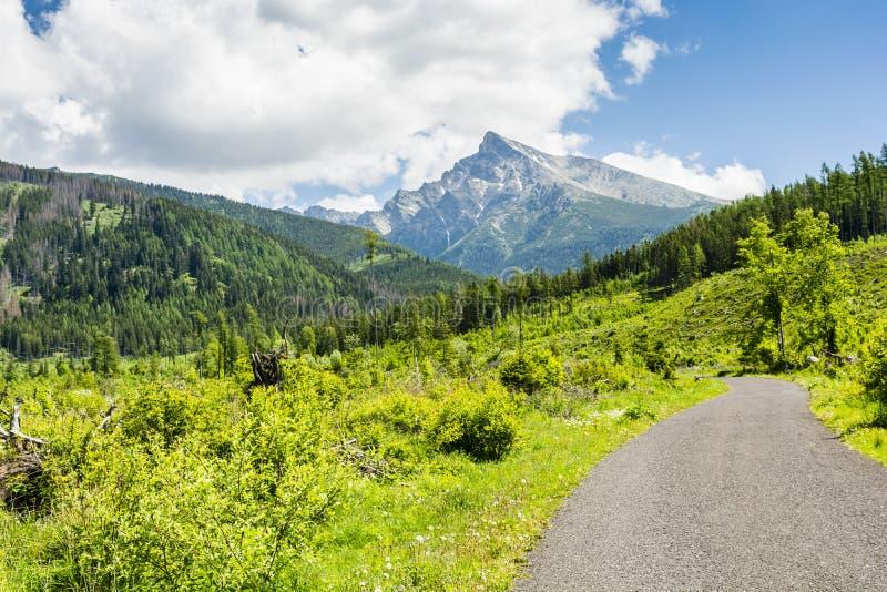Krivan山-山的一个美丽和普遍的目的地在高Tatras远足在斯洛伐克 库存图片