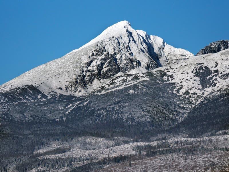 Krivan nevado em Tatras alto imagem de stock