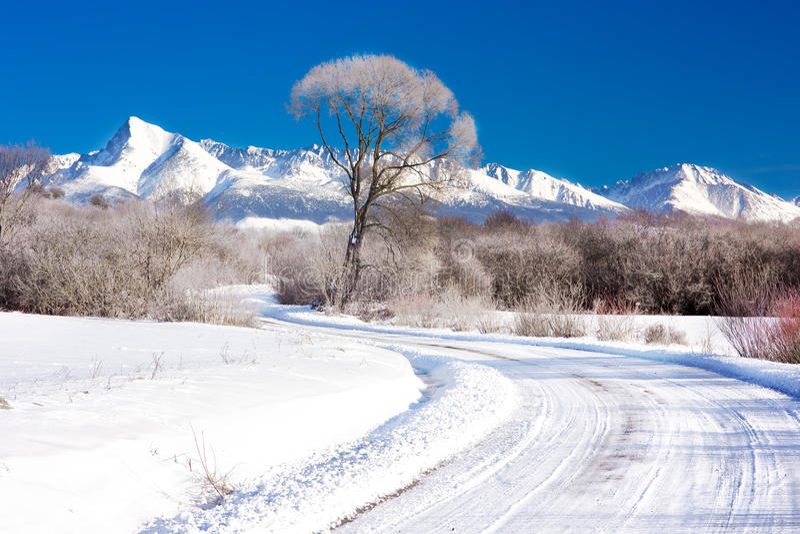 Krivanberg in Hoge Tatras, Slowakije stock foto's