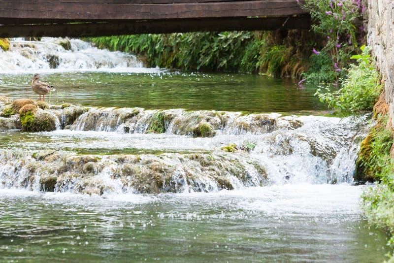 Krka, Sibenik, Croatie - un pont en bois menant au-dessus de quelques cascades de rivière photo stock