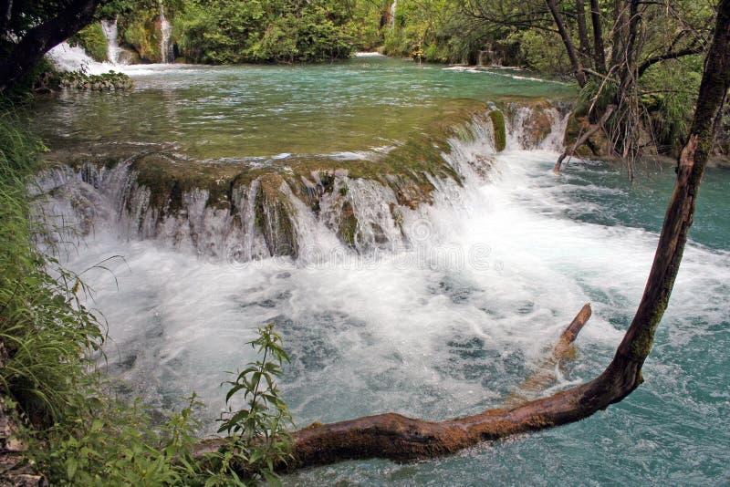 Kroatië-Plitvice stock fotografie