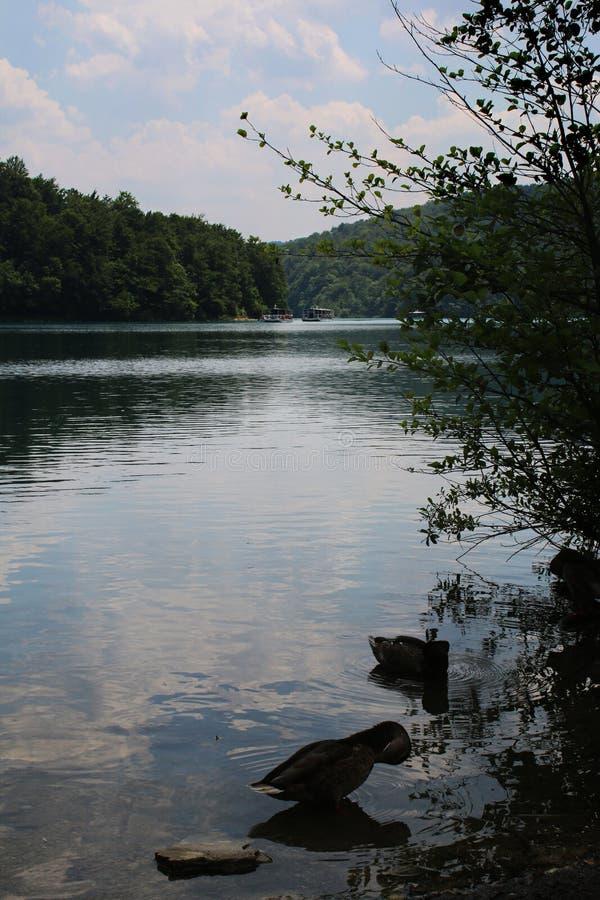 Kroatien natur och landskap Europa lopp wanderlust arkivfoton