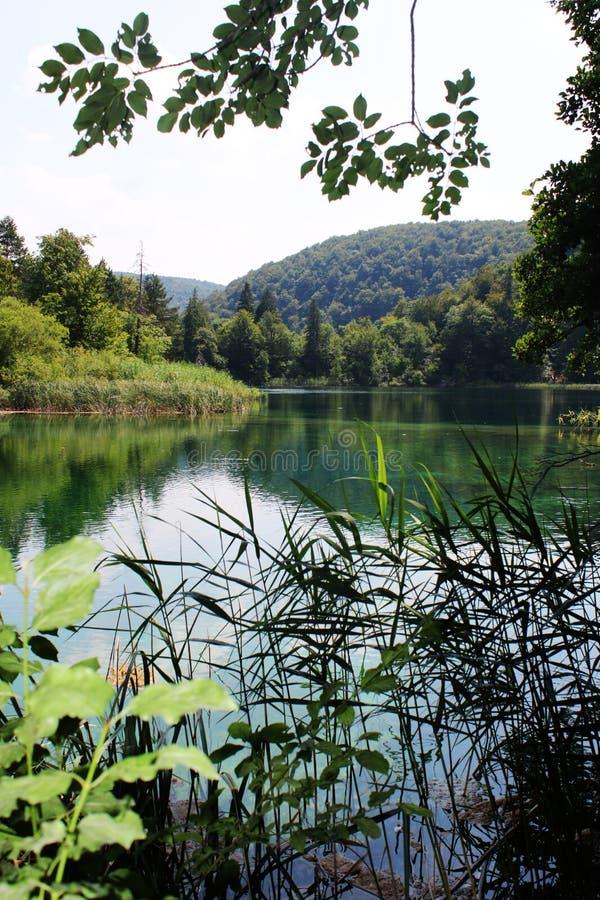 Kroatien natur och landskap Europa lopp wanderlust royaltyfri fotografi