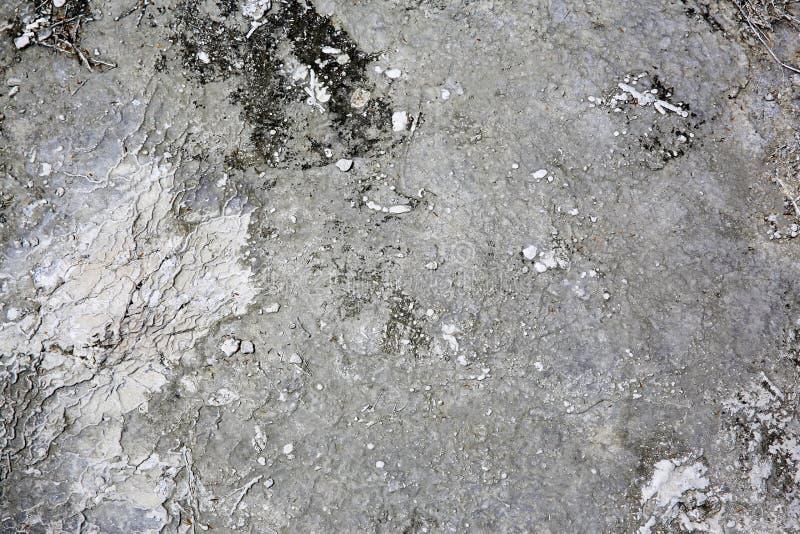 Kroczący sinter tarasy wysoce aktywny geotermiczny teren, obrazy stock