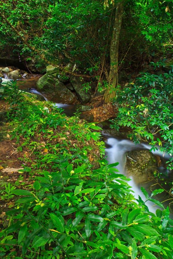Download Krok Ja Dok Siklawa, Tajlandia Obraz Stock - Obraz złożonej z greenbacks, prąd: 41950503