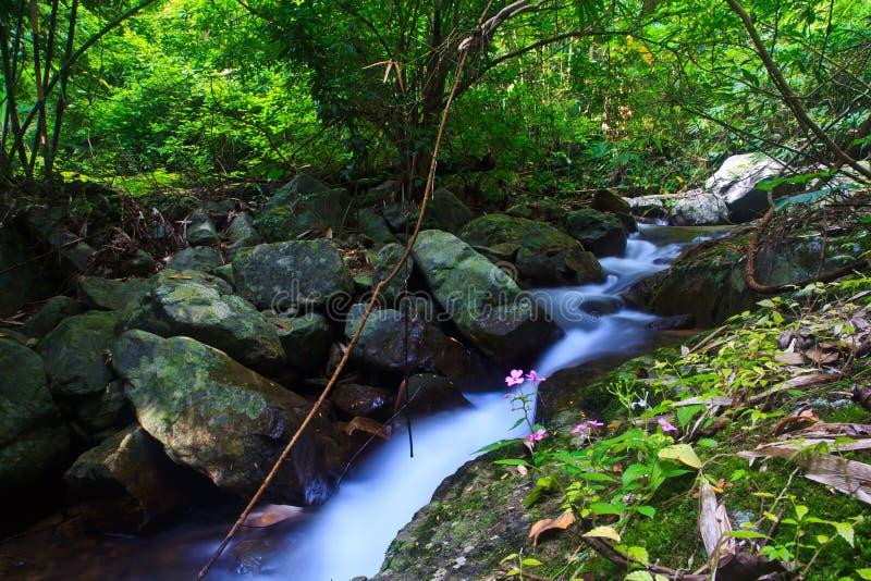 Download Krok Ja Dok Siklawa, Tajlandia Obraz Stock - Obraz złożonej z skała, junior: 41950787