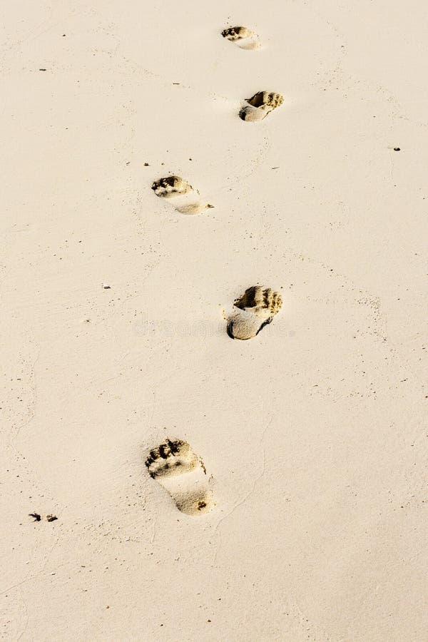 Kroki i Złoty piasek zdjęcia stock