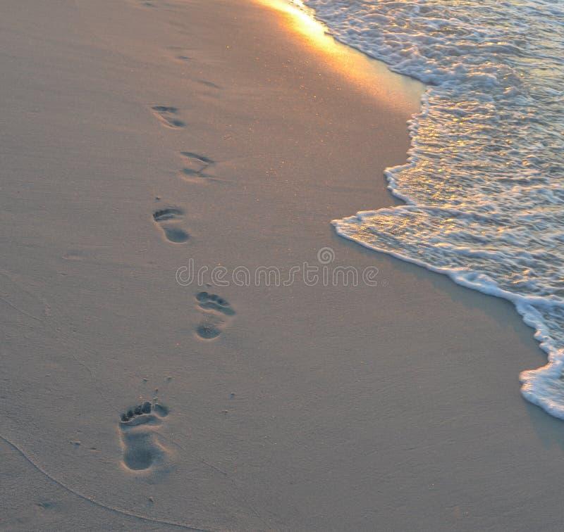Kroki na plaży przy wschód słońca, zmierzchem/ obrazy royalty free