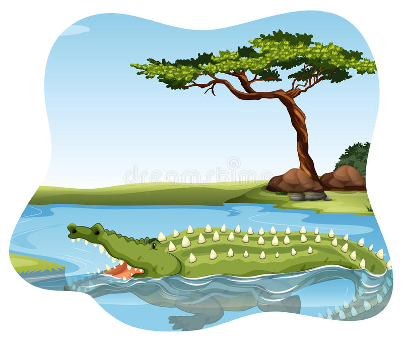 krokodil stock illustratie