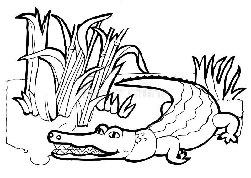 Krokodil, kleurend boek, zwart-witte versie stock illustratie
